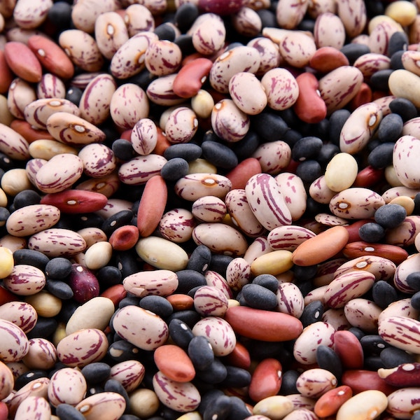 Legumes from the Greek land
